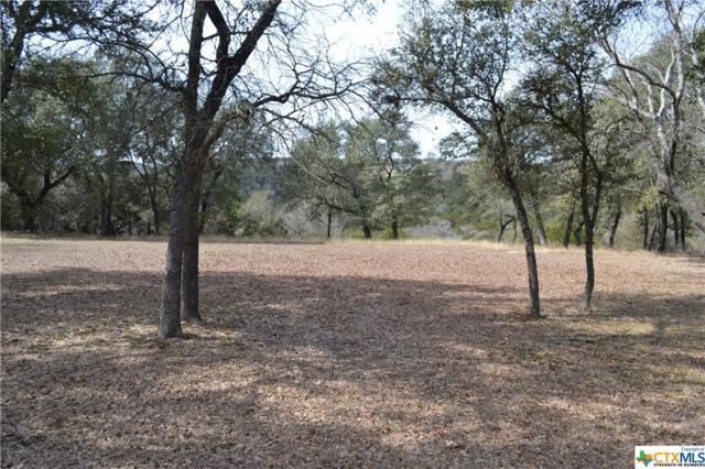 4125 Lago Vista, Belton, TX 76513 (MLS #336958) :: Vista Real Estate