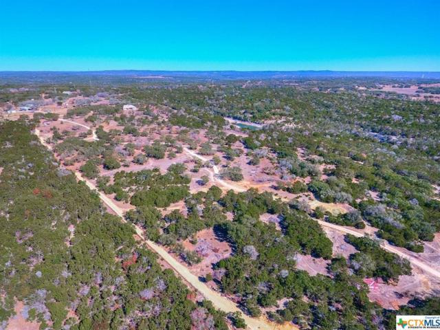 Wimberley, TX 78676 :: Magnolia Realty