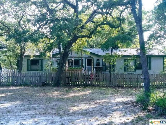 501 Turkey Tree Trail, Seguin, TX 78155 (MLS #337147) :: Magnolia Realty