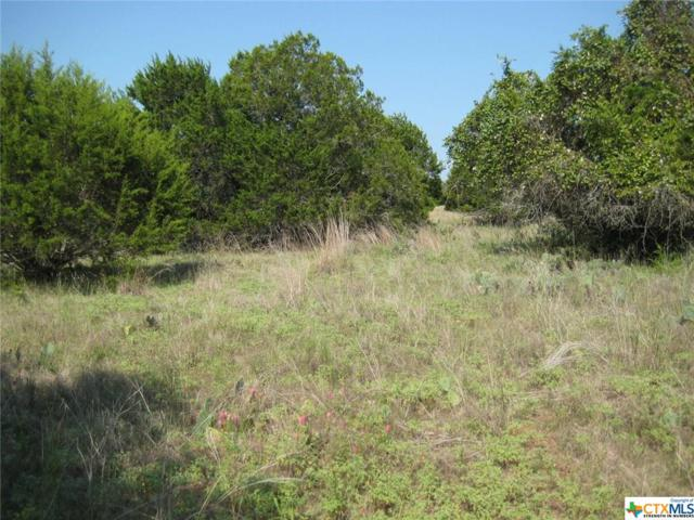 00 Sleepy Hollow Court, Wimberley, TX 78676 (MLS #337168) :: Magnolia Realty