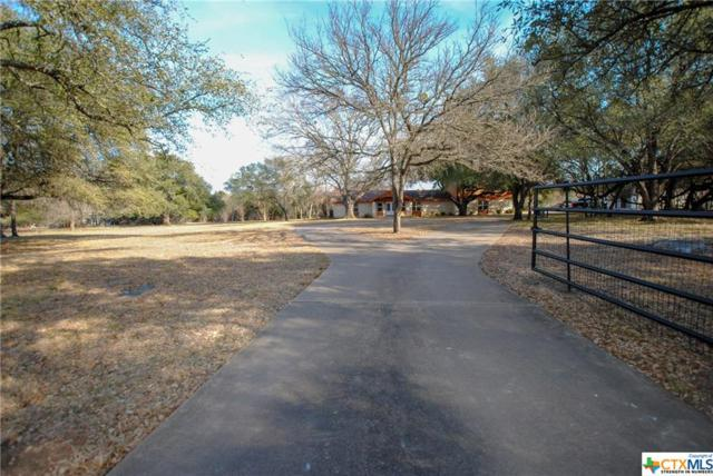 74 Cedar Trails Drive, Belton, TX 76513 (MLS #337209) :: Magnolia Realty