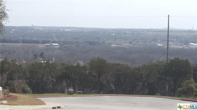 739 Mission, New Braunfels, TX 78130 (MLS #337231) :: Magnolia Realty
