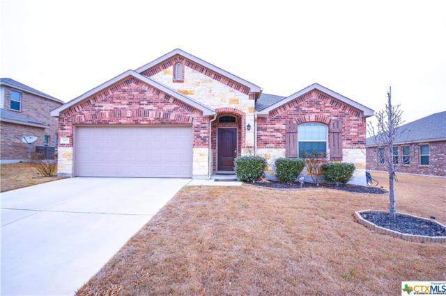 3607 Cotton Patch Drive, Killeen, TX 76549 (MLS #337324) :: Texas Premier Realty
