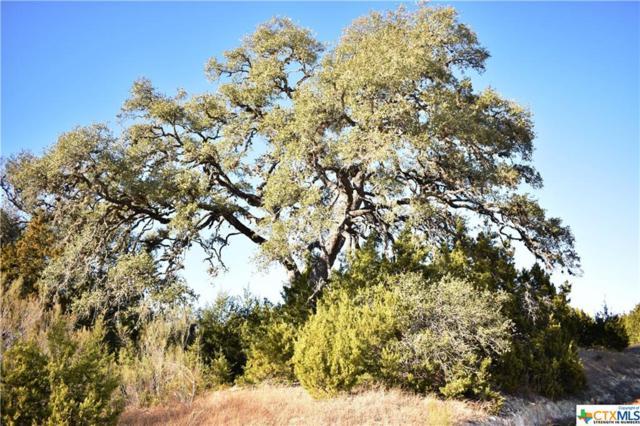 Lot 584 Desiree, Canyon Lake, TX 78133 (MLS #337331) :: Erin Caraway Group