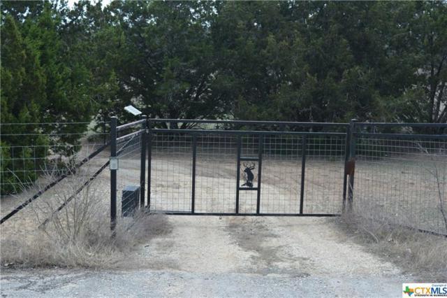 TBD W Clark Street, Canyon Lake, TX 78133 (MLS #337403) :: Magnolia Realty
