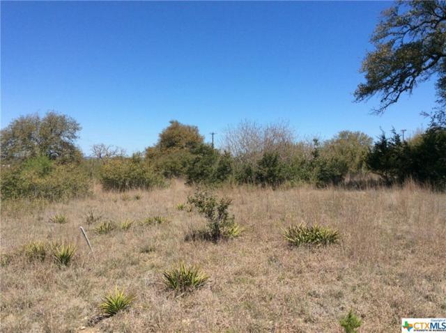 TBD Roy Nichols Drive, Blanco, TX 78606 (MLS #337562) :: Magnolia Realty