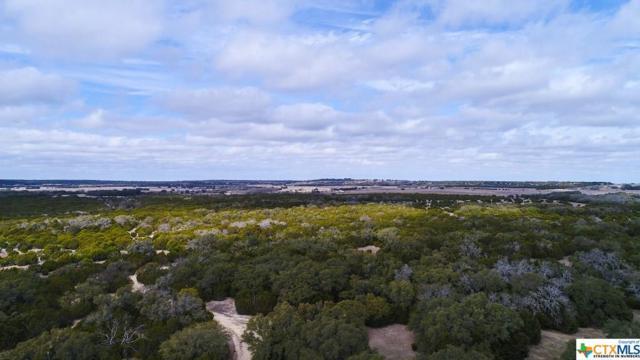 2517 County Road 2600, Lometa, TX 76853 (MLS #337668) :: Magnolia Realty