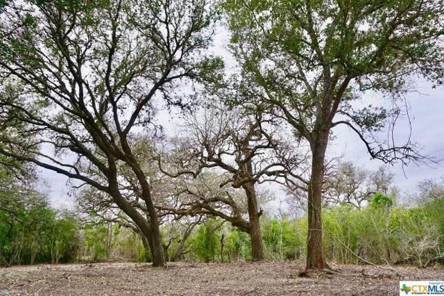 838 E Oak Street #2, Goliad, TX 77963 (MLS #337708) :: RE/MAX Land & Homes