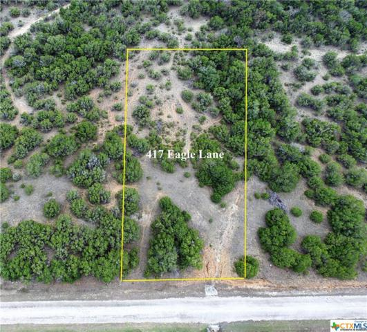 417 Eagle Lane #1, Fischer, TX 78623 (MLS #337899) :: Magnolia Realty