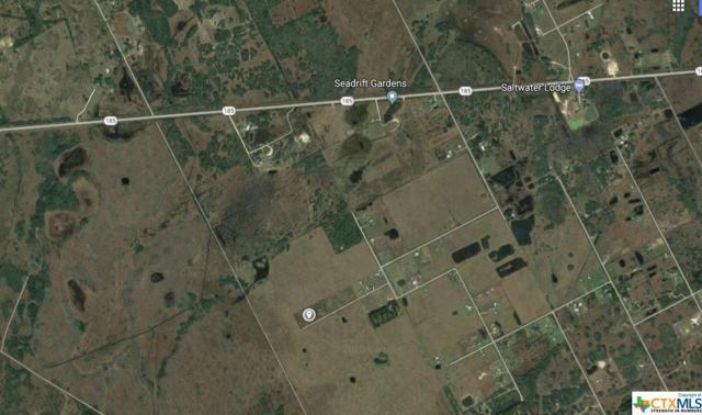 000 Mcallister, Seadrift, TX 77983 (MLS #337946) :: RE/MAX Land & Homes