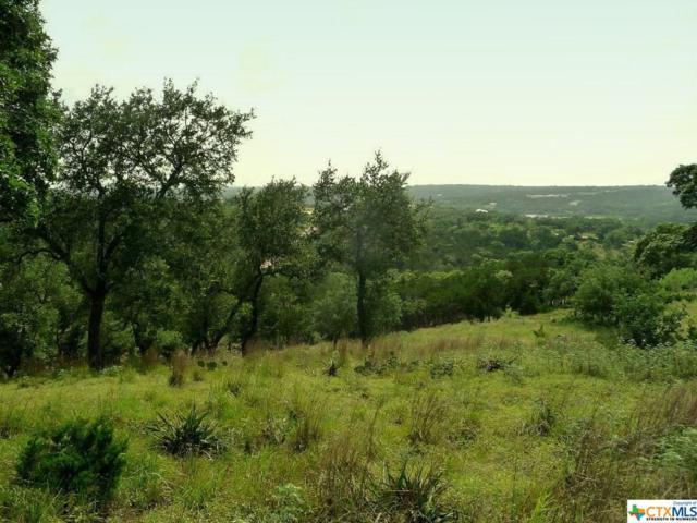 2432 Bella Vista, Canyon Lake, TX 78133 (MLS #339400) :: Magnolia Realty