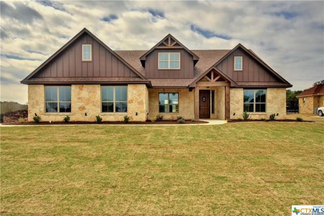 413 Creekside Meadow, Salado, TX 76571 (MLS #339456) :: Erin Caraway Group