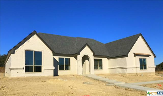 1016 Bella Vita, Nolanville, TX 76559 (MLS #339698) :: The i35 Group