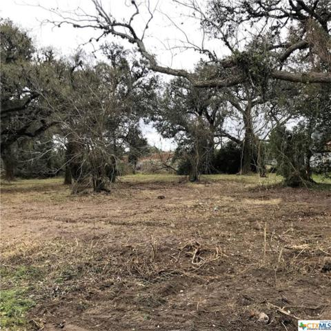 3601 Us Hwy 59, Edna, TX 77957 (MLS #339955) :: The Zaplac Group