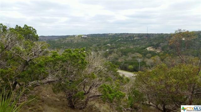 421 Edgar, Canyon Lake, TX 78133 (MLS #339964) :: Magnolia Realty