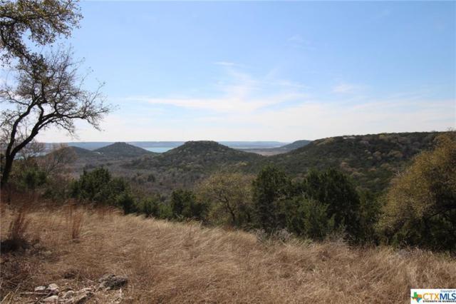 4177 Lago Vista Drive, Belton, TX 76513 (MLS #340097) :: Erin Caraway Group