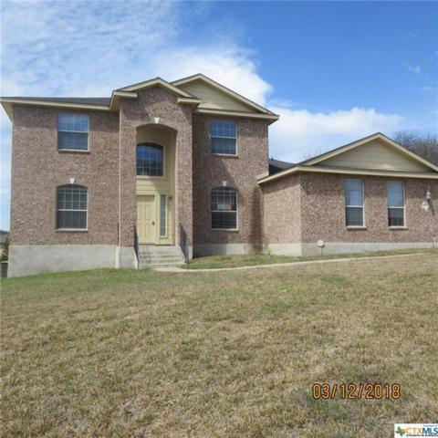 2002 Sandy Point Road, Harker Heights, TX 76548 (MLS #340241) :: Texas Premier Realty