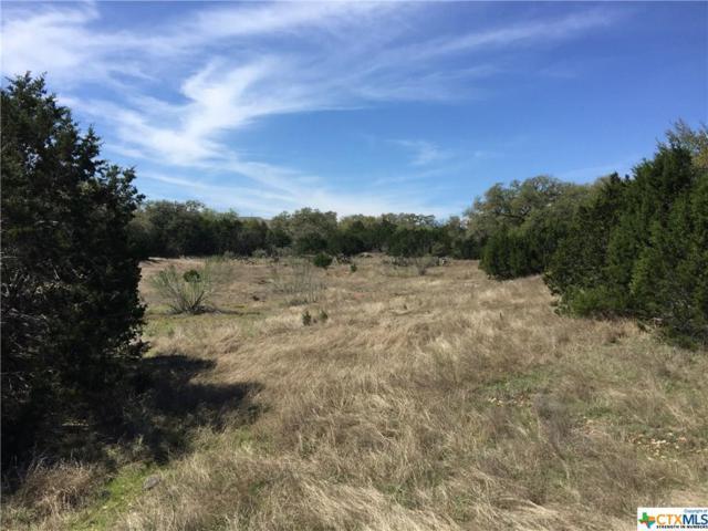 235 Pin Oak Trail, New Braunfels, TX 78132 (MLS #340275) :: Magnolia Realty