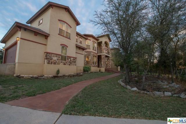 1580 County Road 2801, Mico, TX 78056 (MLS #340336) :: Magnolia Realty