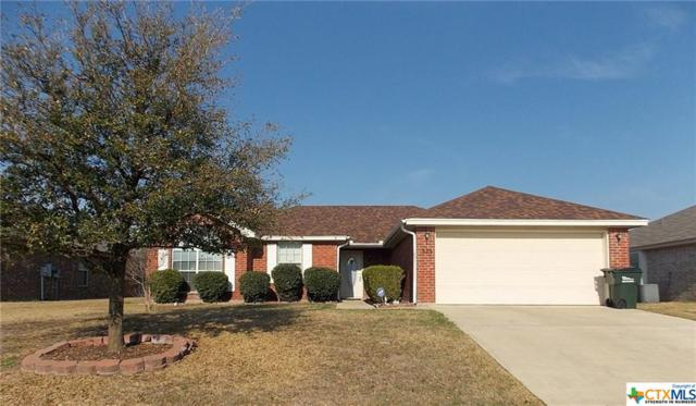 325 Sims Ridge Drive, Nolanville, TX 76559 (MLS #340448) :: The i35 Group