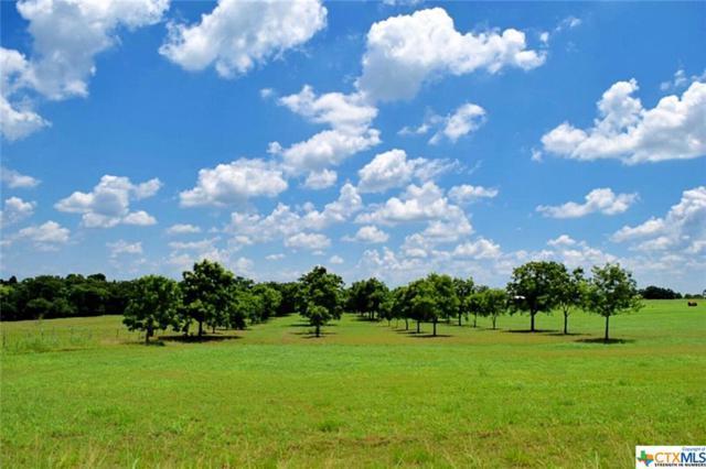 000 Hranicky Road, Schulenburg, TX 78956 (#340454) :: First Texas Brokerage Company