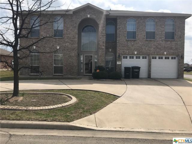 100 Lone Shadow, Harker Heights, TX 76548 (MLS #340531) :: Texas Premier Realty