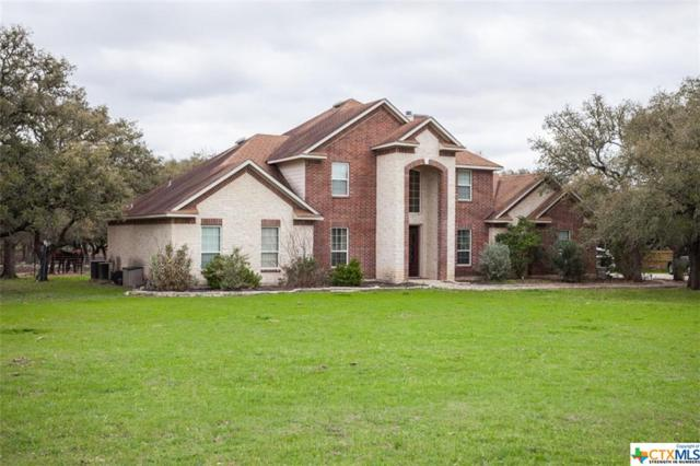 526 Landons, Spring Branch, TX 78070 (MLS #340620) :: Erin Caraway Group