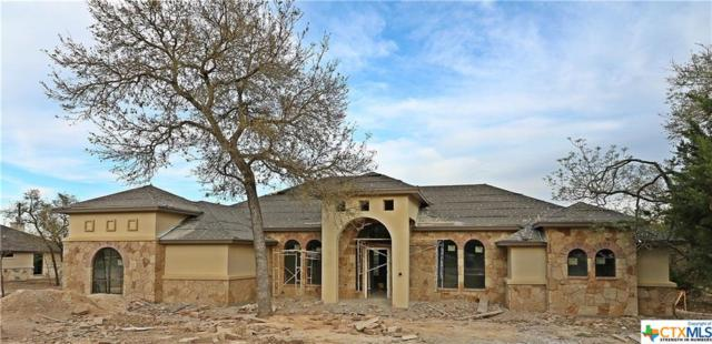 218 Canaan Drive, Belton, TX 76513 (MLS #340648) :: The i35 Group