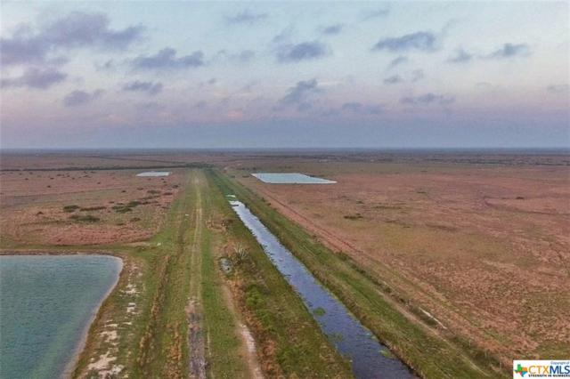 4930 Fm 1289, Port Lavaca, TX 77979 (MLS #340710) :: The Myles Group