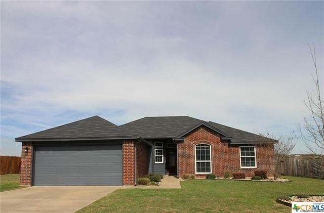 417 Tomahawk, Harker Heights, TX 76548 (MLS #340716) :: The i35 Group