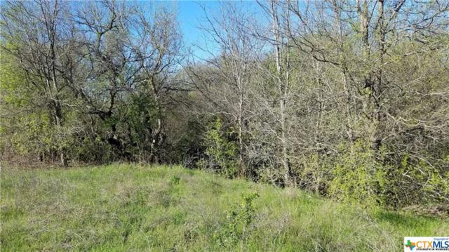 2013 Taylors Valley Road, Belton, TX 76513 (MLS #340921) :: Magnolia Realty