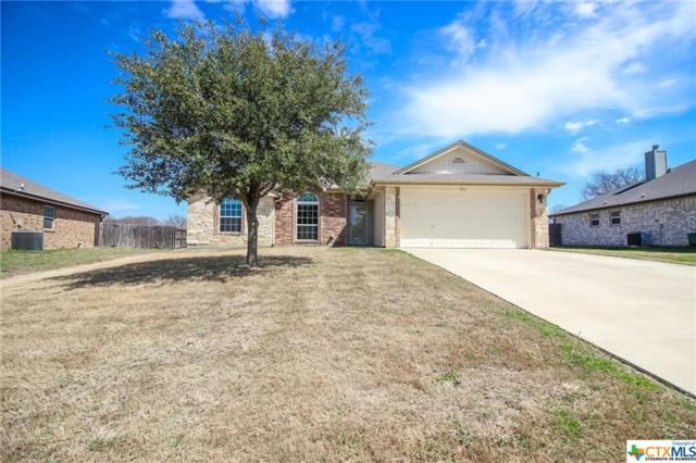 411 Mccullough Loop, Temple, TX 76502 (MLS #340958) :: The i35 Group