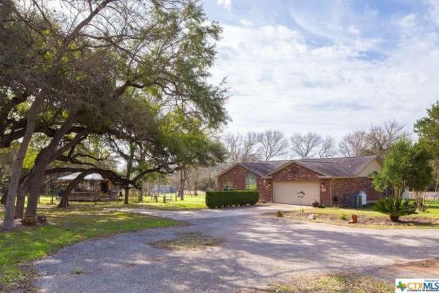 14147 Fm 306, Canyon Lake, TX 78133 (MLS #341038) :: Texas Premier Realty