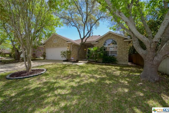 11718 Adriana Maria, San Antonio, TX 78253 (MLS #341044) :: The i35 Group