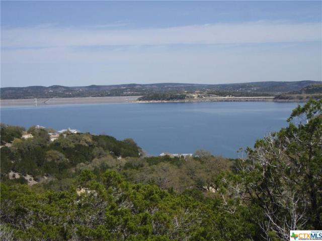 1010 Sierra Blanca, Canyon Lake, TX 78133 (MLS #342263) :: Magnolia Realty