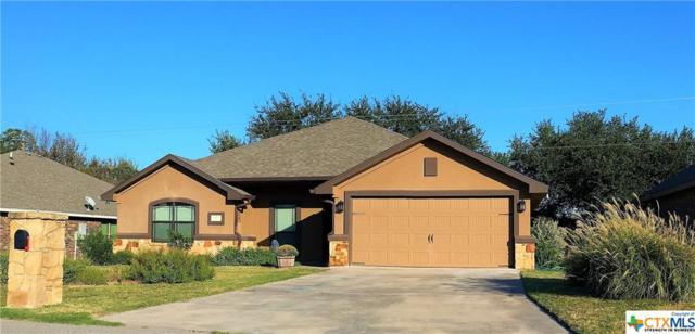 231 Sheridan Loop, Belton, TX 76513 (MLS #342293) :: Magnolia Realty