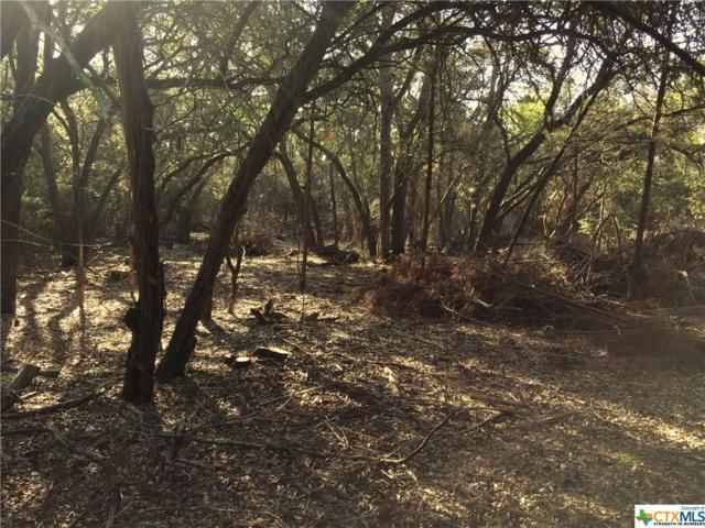 120 Sierra Canyon, Canyon Lake, TX 78133 (MLS #342319) :: Magnolia Realty