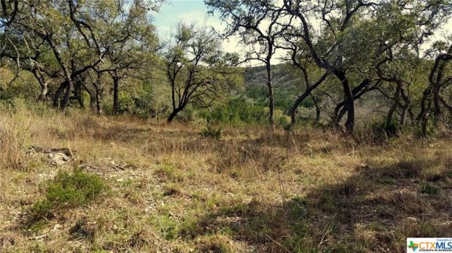 611 Brittany -Acres 10.64Ac, Canyon Lake, TX 78133 (MLS #342421) :: Erin Caraway Group