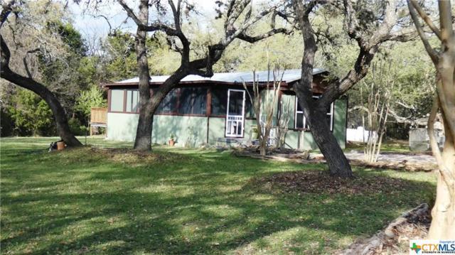 3013 View Ridge Drive, Spring Branch, TX 78070 (MLS #342485) :: Erin Caraway Group