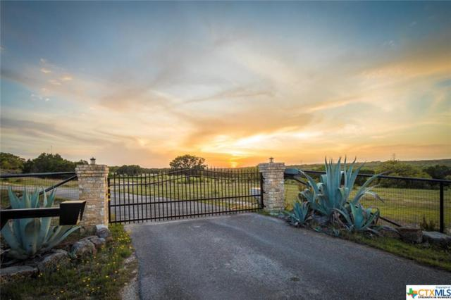 1301 Fm 2722, New Braunfels, TX 78132 (MLS #342600) :: Berkshire Hathaway HomeServices Don Johnson, REALTORS®