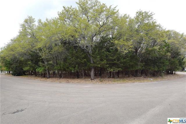 2220 Tye Valley, Harker Heights, TX 76548 (MLS #342788) :: Erin Caraway Group