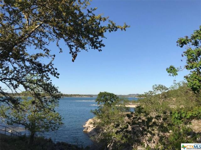 1168 Rip Jay Circle, Canyon Lake, TX 78133 (MLS #343093) :: Erin Caraway Group