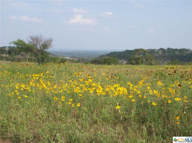 0 Brushy Ridge Trail, Blanco, TX 78606 (MLS #343131) :: Magnolia Realty