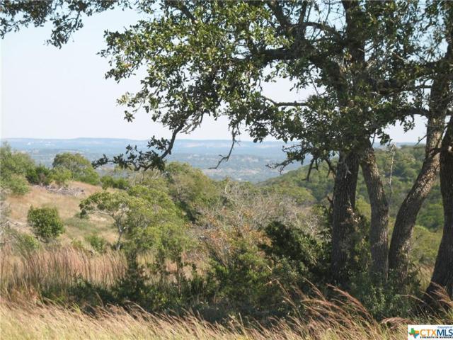 0 Brushy Ridge Trail, Blanco, TX 78606 (MLS #343137) :: Magnolia Realty
