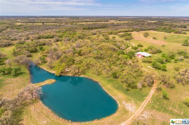 227 Rutherford Lane, Goliad, TX 77963 (MLS #343351) :: RE/MAX Land & Homes