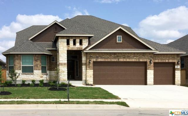 208 Kildare, Cibolo, TX 78108 (MLS #343370) :: Erin Caraway Group
