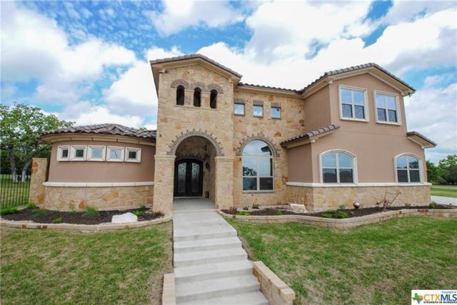 5000 Lago Vista, Belton, TX 76513 (MLS #343547) :: Erin Caraway Group