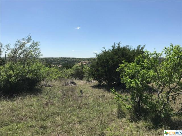 1118 Presidio, Canyon Lake, TX 78133 (MLS #343600) :: Magnolia Realty