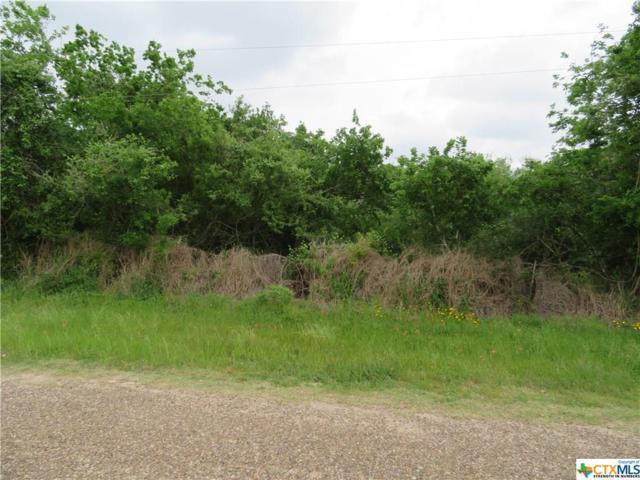000 Mission View, Goliad, TX 77963 (MLS #343813) :: RE/MAX Land & Homes