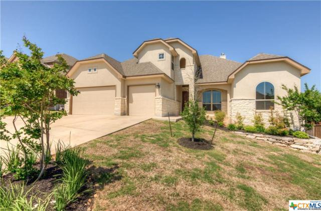 3411 Texas Sotol, San Antonio, TX 78261 (MLS #343901) :: Magnolia Realty